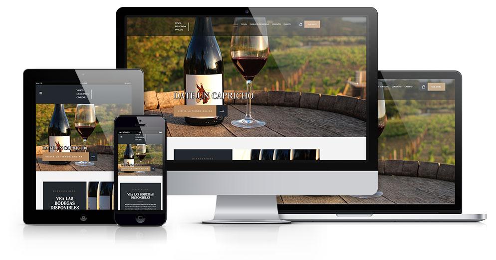 vinos de ronda